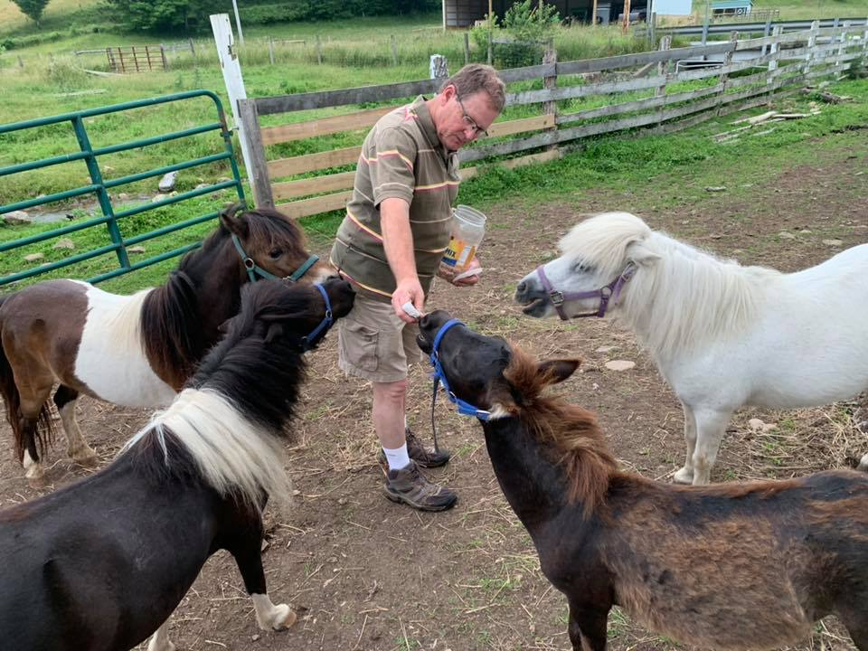 Dr. Joe feeding cookies to the Elegius Mini Equine Sanctuary residents