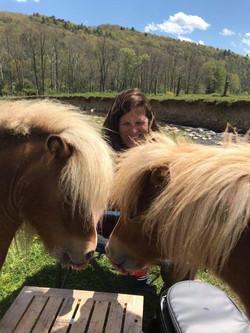 Georgie and Neil, residents at the Elegius Mini Equine Sanctuary