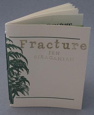 Fracture+copy.jpeg