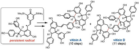 vitisin_TOC.jpg