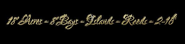 The Jigsaw Lake Info.PNG