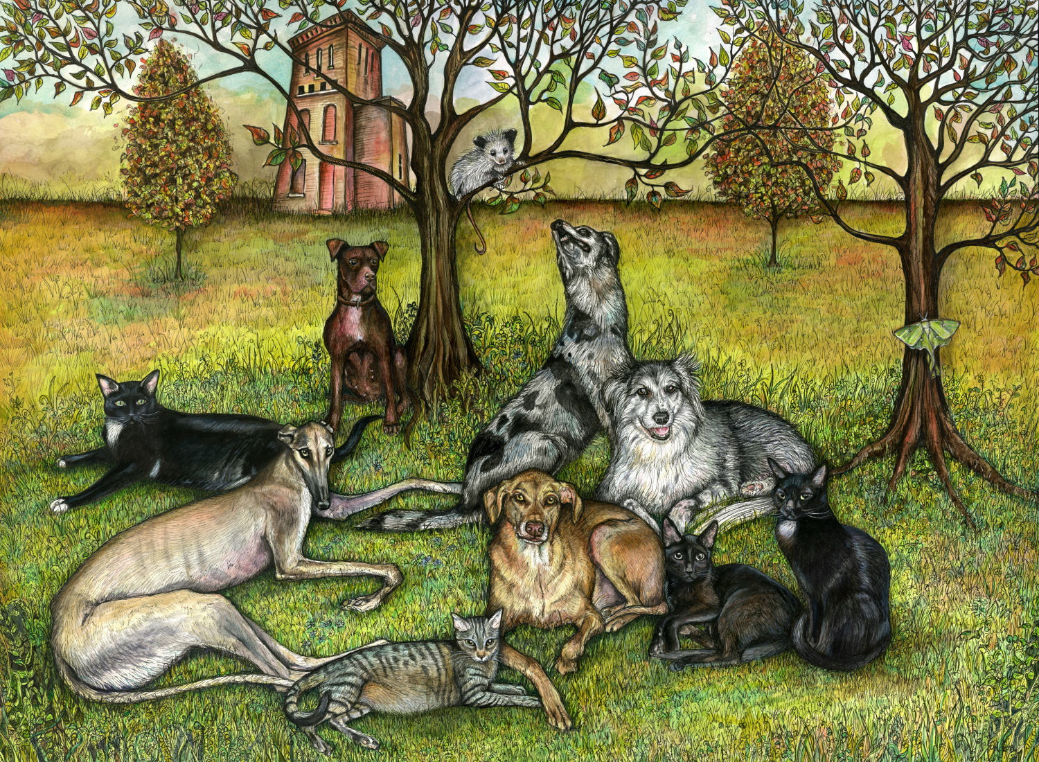 Commissioned Paintings, Cats, Dogs, a Lunar Moth and a Possum.