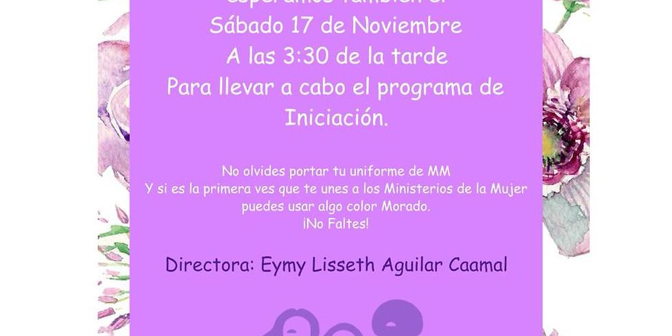 Iniciación Ministerio de la Mujer