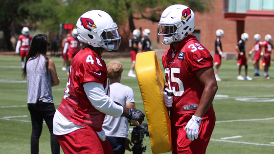 Fullbacks make a return with Cardinals