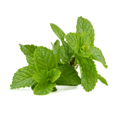 mint-leaf-5000530_1920.png