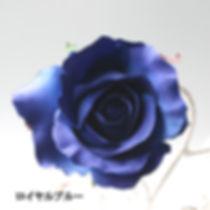 髪飾り用のバラの色見本、新色ロイヤルブルー