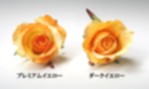 髪飾り用のバラの色見本、イエロー系