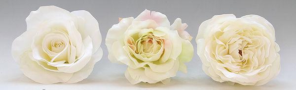 3種のバラ、それぞれに特徴が