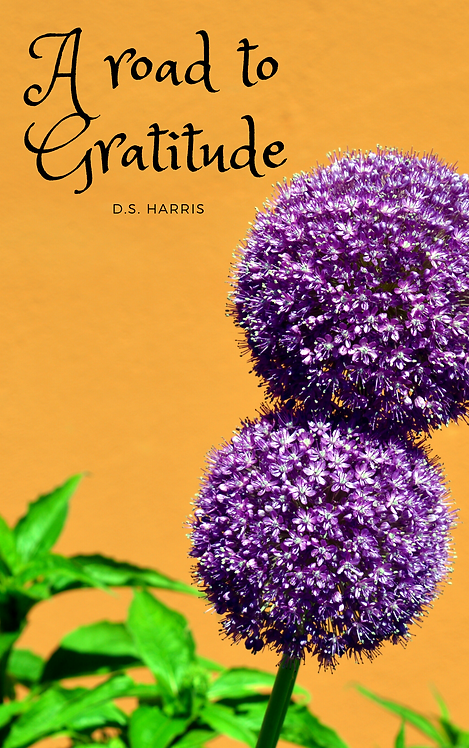 A Road to Gratitude: A Daily Workbook (Artsy Edition)