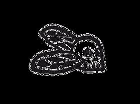 skullcada%2520logo_edited_edited.png