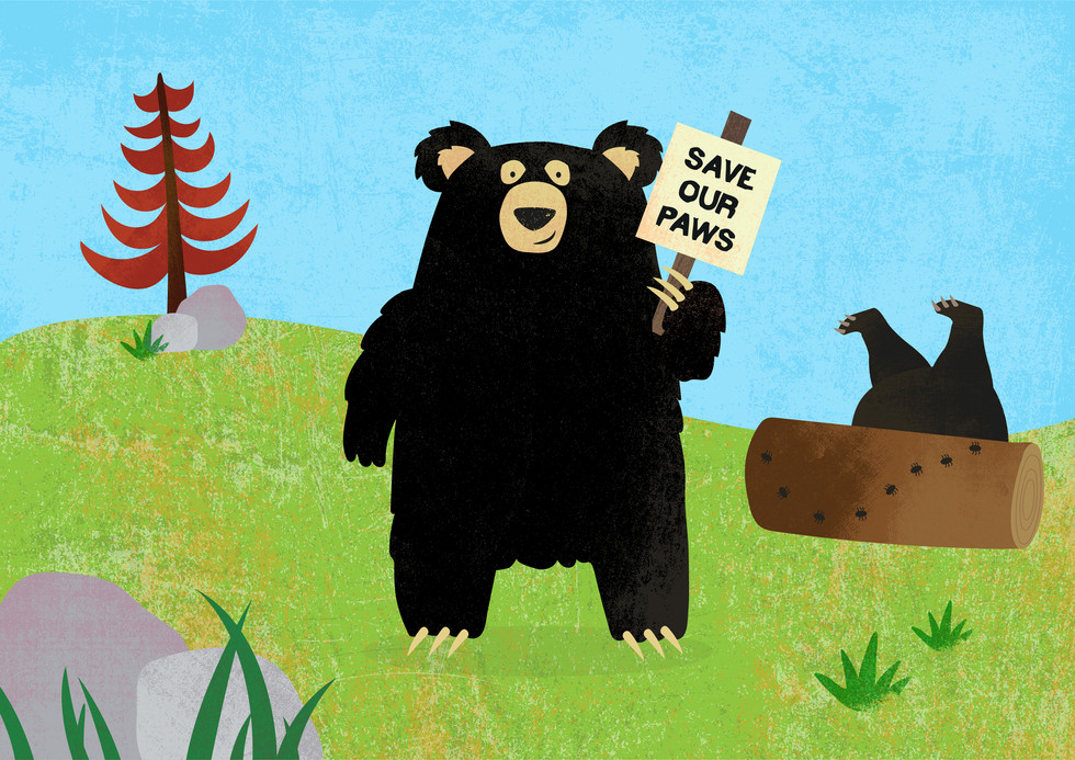 Save our paws-06.jpg
