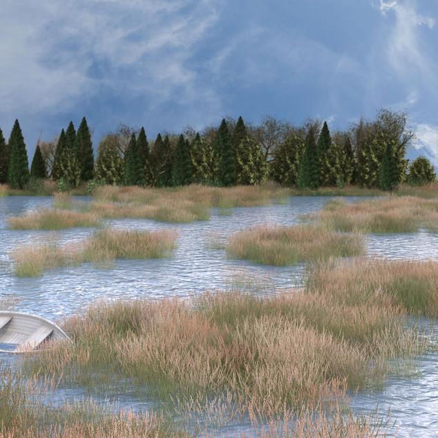 Marsh Day Scene