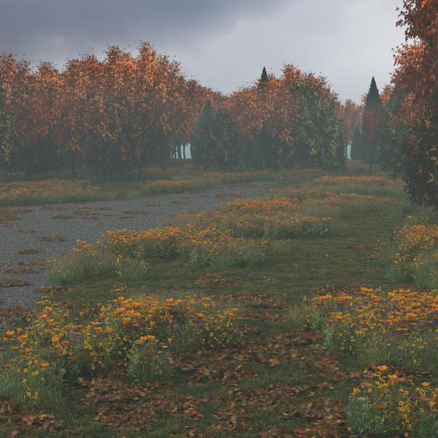 Fall Scene Fog