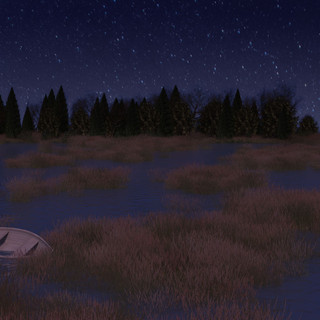 Marsh Night Scene