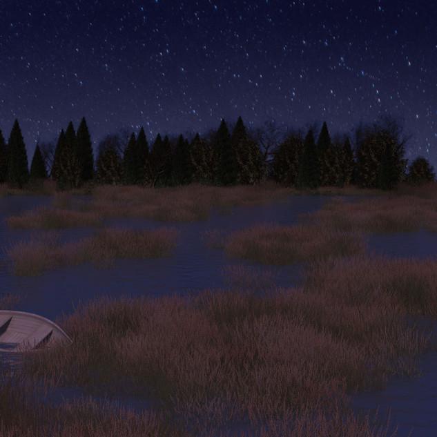 Marsh Night Scene