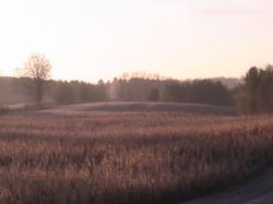 2012-11-08-PIC_0458