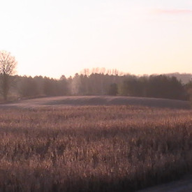 2012-11-08-PIC_0458.jpg