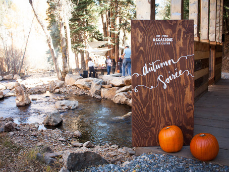 OCCASIONS AUTUMN SOIREE EVENT 2016