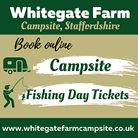 whitegate farm campsite & fishing main r