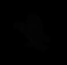 enneagram type three