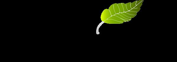 Logo_3384x.png
