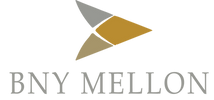 vinings management corporation consulting firm