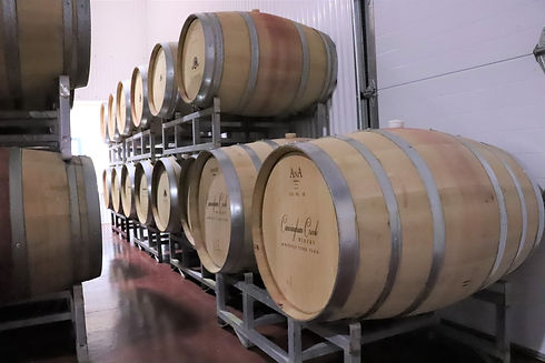 a dozen french oak barrels placed laying down inside a wine warehouse