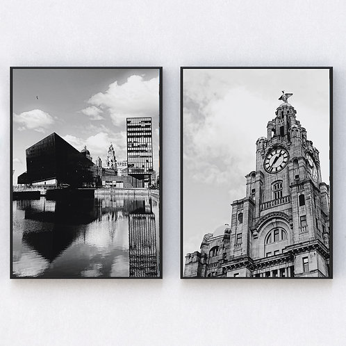 Liver Building Set of Two