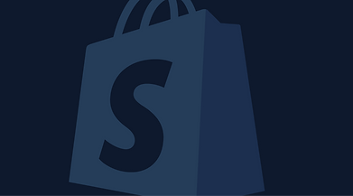 Shopify Fulfillment mit blauband