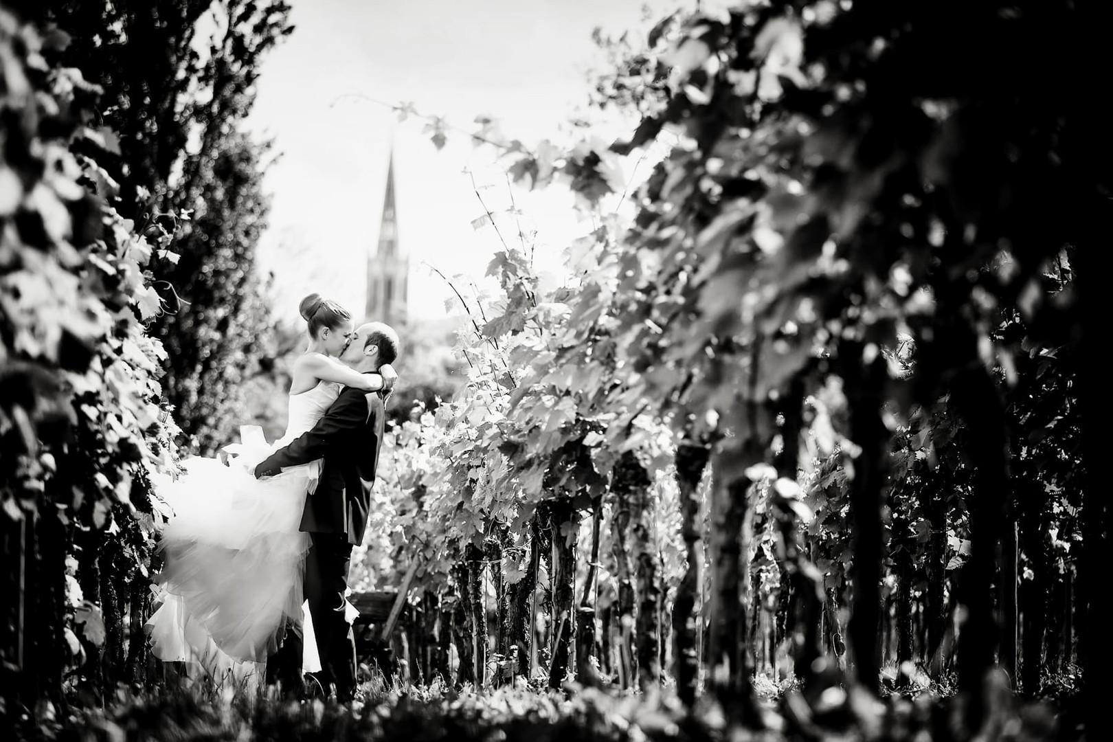 Heiraten in den Weinreben