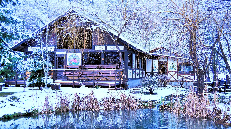 Terasa de iarnă
