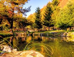 Liniștea lacului