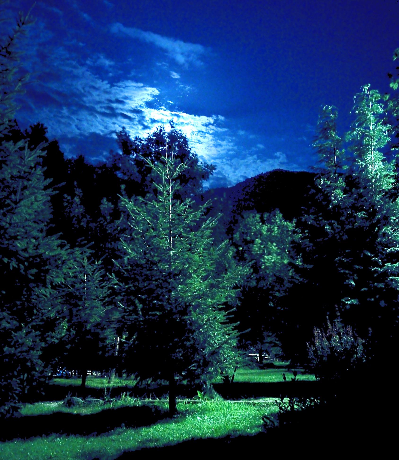 Sub clar de lună