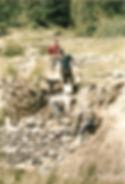 Istoria noastra - 2001 - Fratii Jderi Utopia Verde