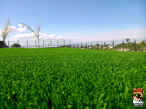 Artificial Grass Alzira