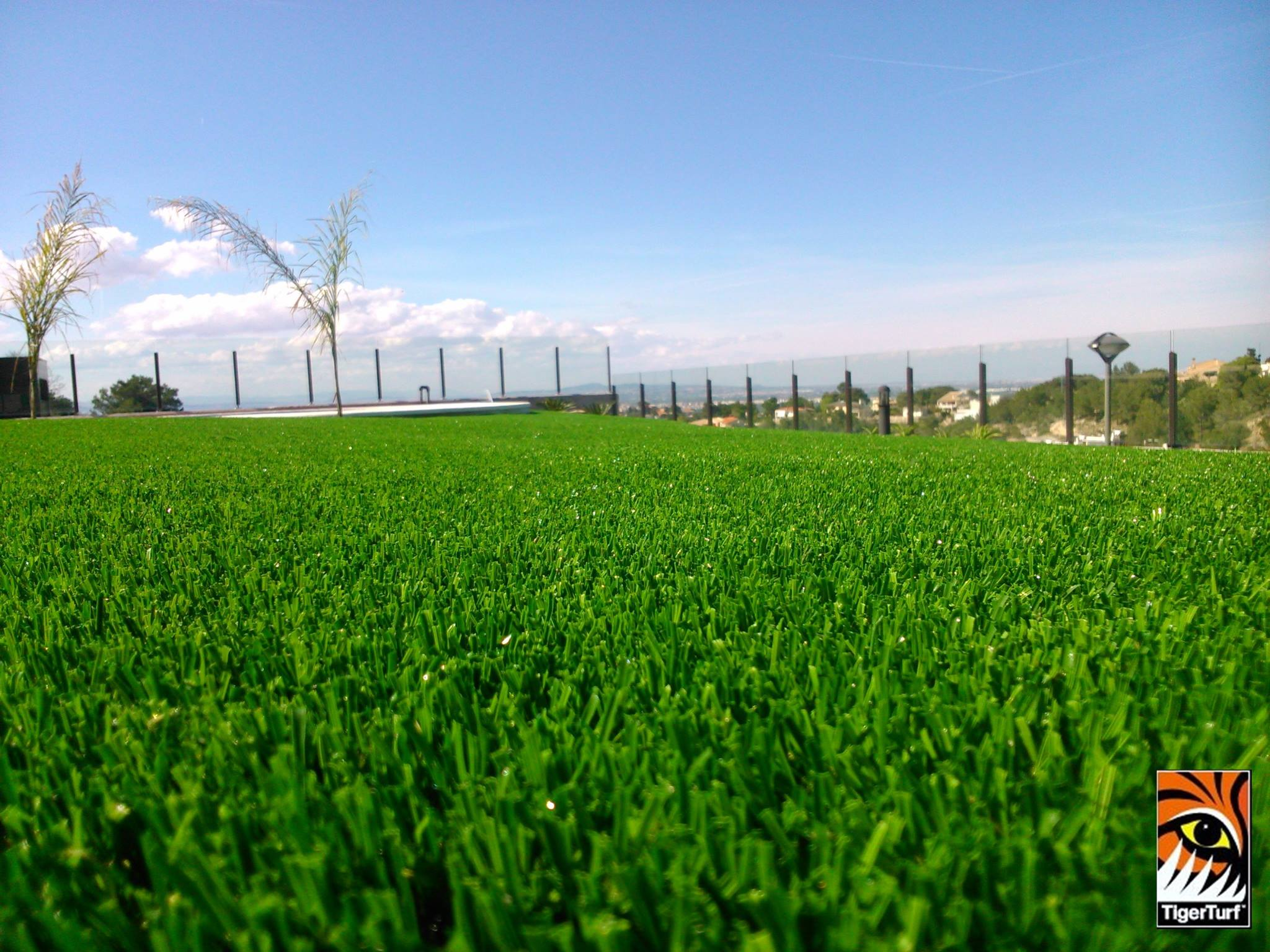 Artificial Grass Valencia