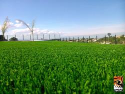 Artificial Grass Valencia