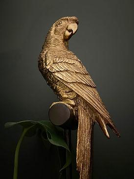 Parrot Style.jpg