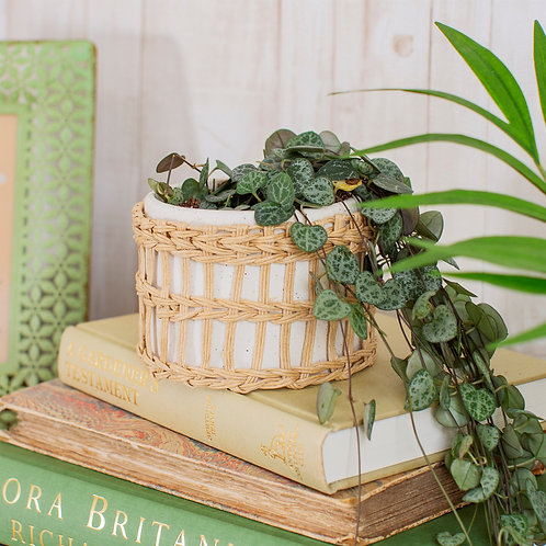 Speckled Stone & Woven Planter