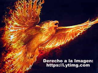 La caída del ave Fénix o la victoria del mismo.