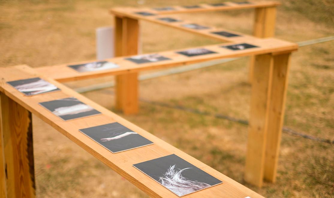 "Installation view of Rahul Kumar Das'""Sanguinity"""