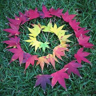 Maple-Leaf-Spiral.jpg