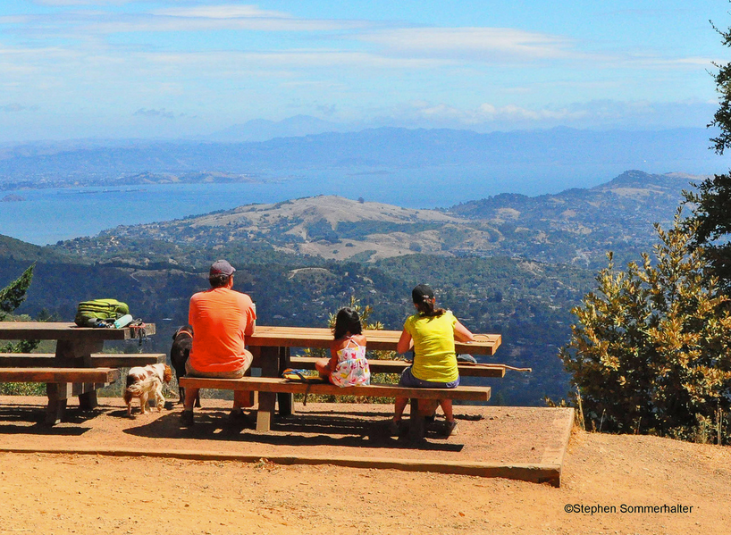 picnic table view