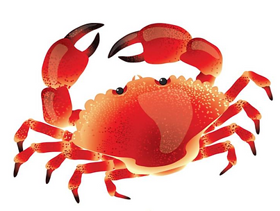 3rd Annual Crab Feed Sunday, Feb 9, 2020