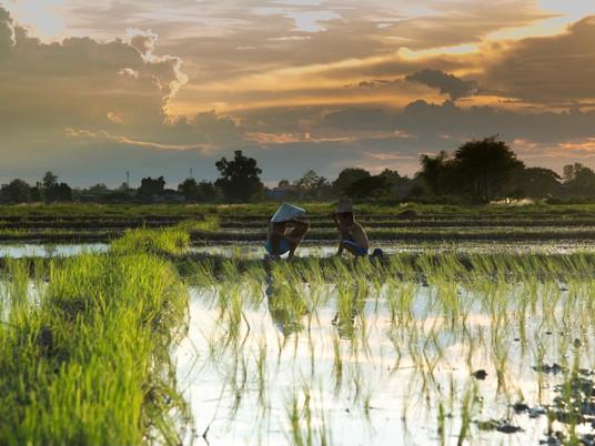 Cambodia looks to autumn unlocking