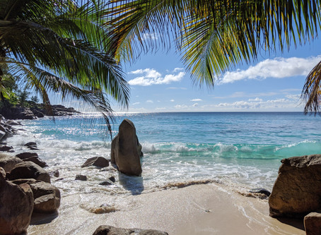 Seychelles streamlines arrivals process with new app