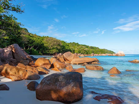 Seychelles opens largest regional Covid testing lab