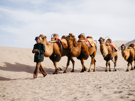 Silk Road photography exhibition launched