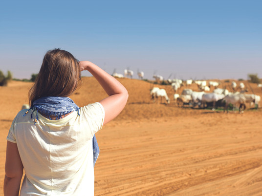 Emirates celebrates desert conservation project