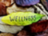 Wellness concept written on leaf.jpg